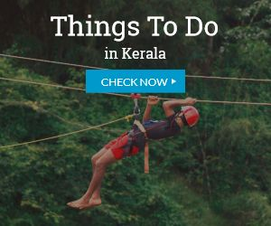 Activities & Things to do in Kerala