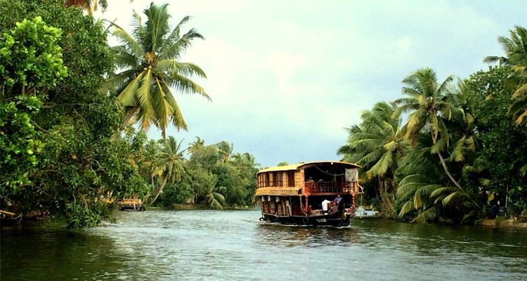 The Alleppey Backwaters